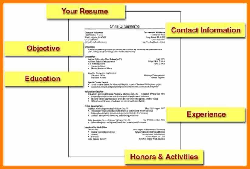 8+ simple job resumes examples | sephora resume
