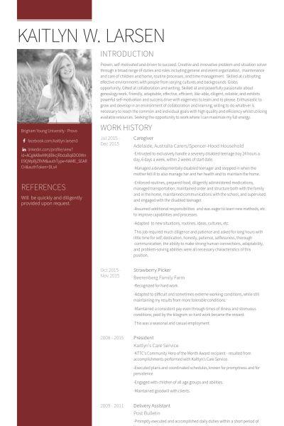 Betreuer CV Beispiel - VisualCV Lebenslauf Muster Datenbank