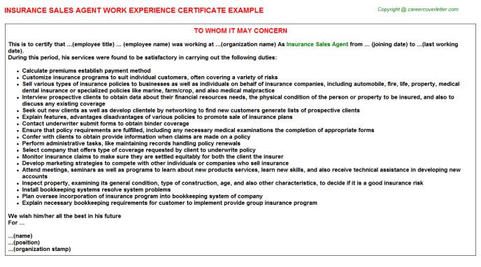 Insurance Sales Agent Work Experience Certificate