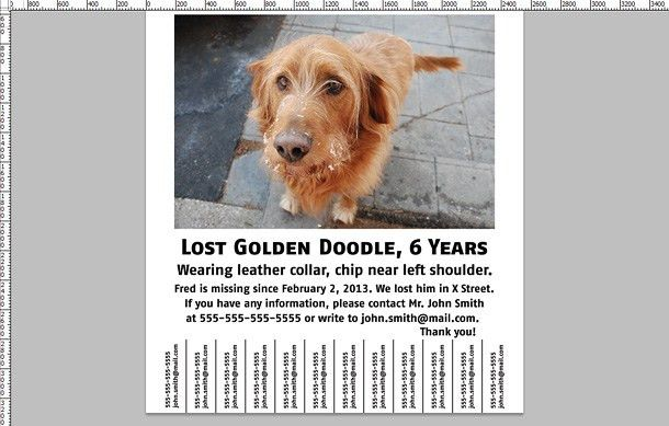 How To: Make a Lost Dog Poster - Printaholic.com