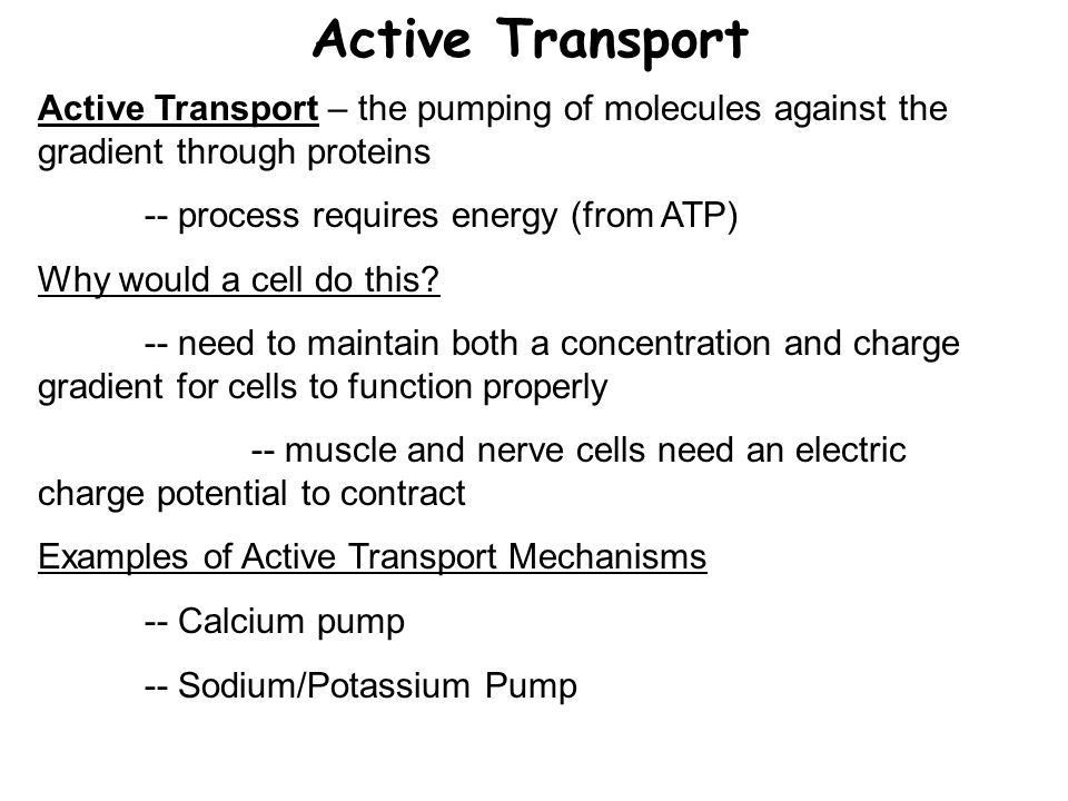 Membrane Transport. Reasons For Membrane Transport Cells need ...