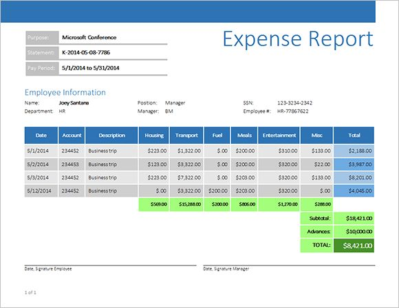 sample business expense report - Template