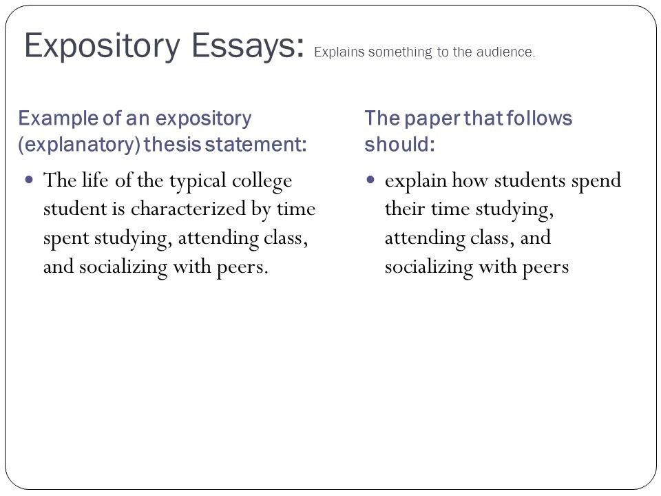 example essay thesis statement