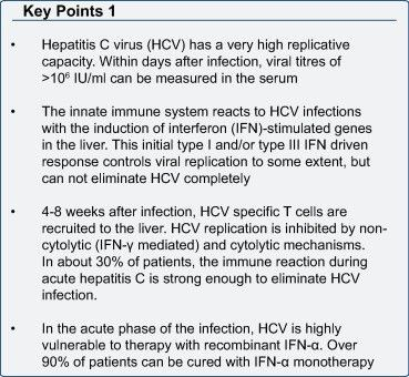 Innate and adaptive immune responses in HCV infections - ScienceDirect
