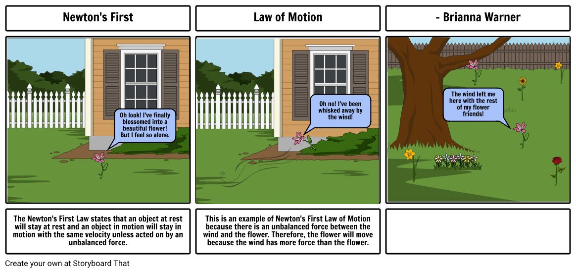 Newton's First Law of Motion Example Storyboard