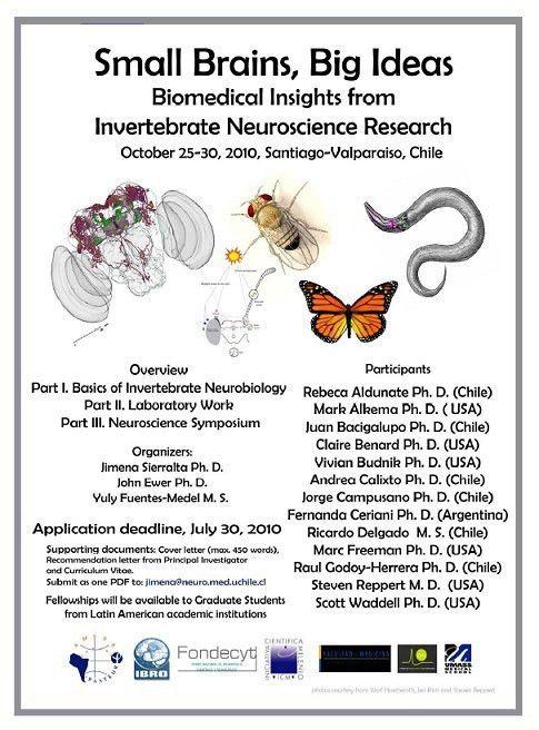 Cover letter for postdoc in neuroscience