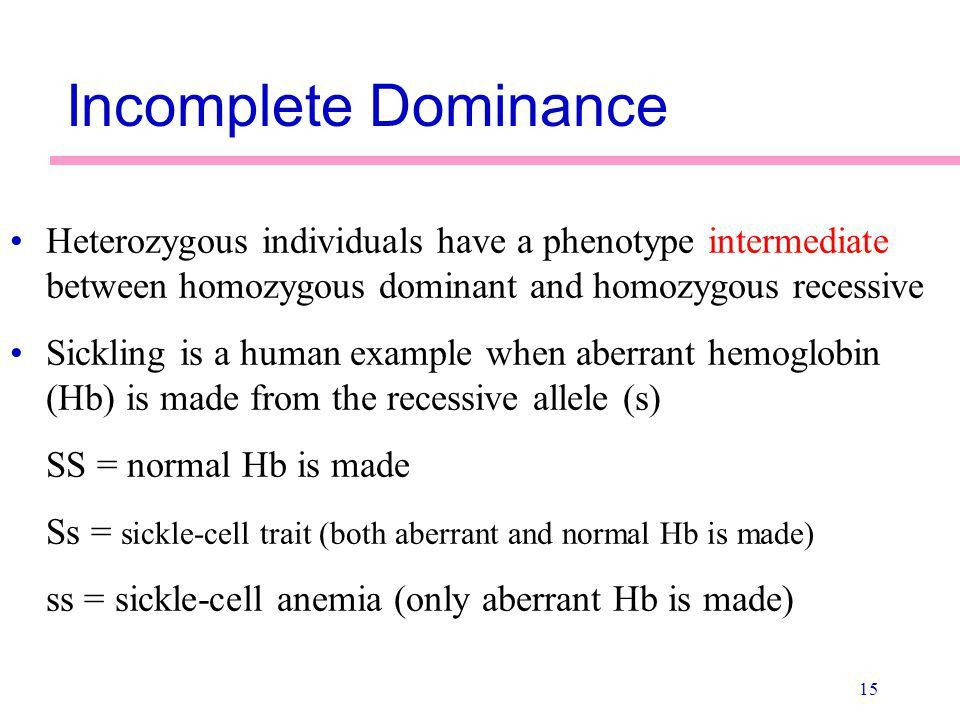 Principles of Heredity - ppt video online download
