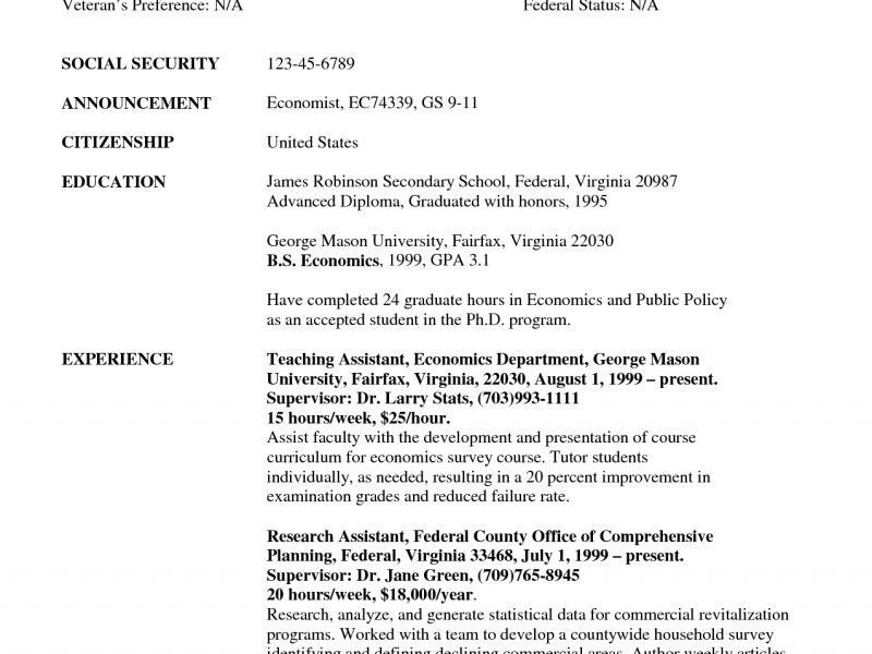 Government Resume Template - Resume Example