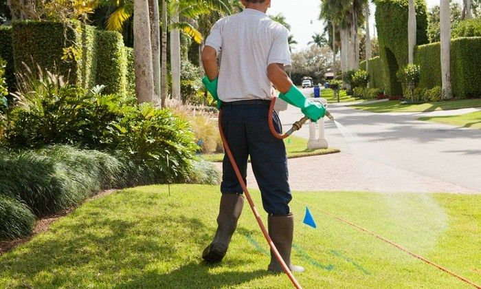 Lawn and Garden Care - Harmony Restoration Lawn Care Services ...