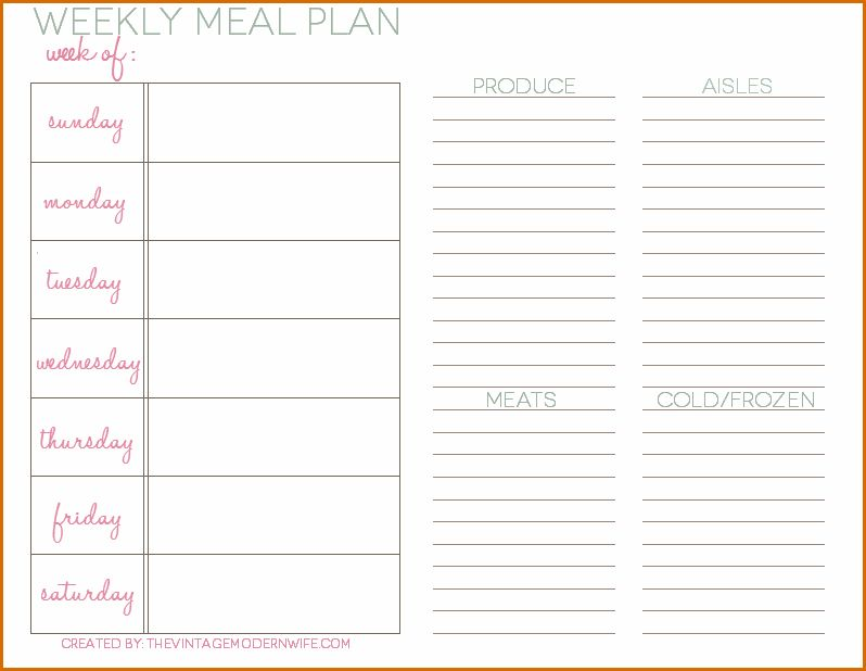 5+ daily meal plan template | Authorizationletters.org