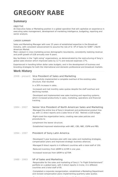 Vice President Of Sales And Marketing Resume samples - VisualCV ...