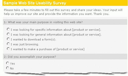 Sample Web Site Usability Survey :: Easy, Effective, Insightful ...