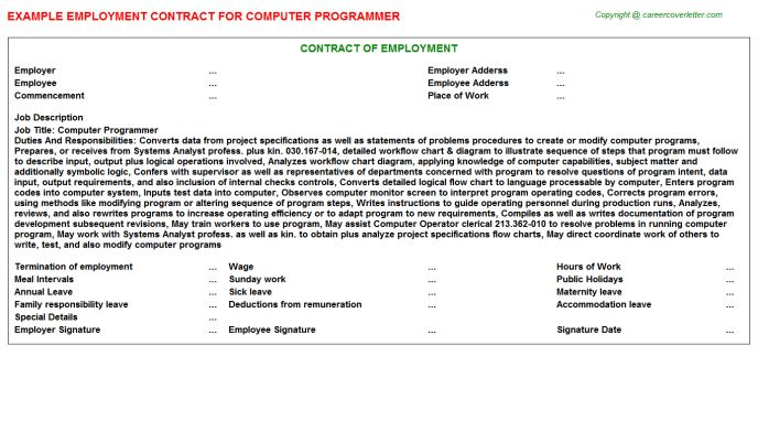 Computer Programmer Employment Contracts