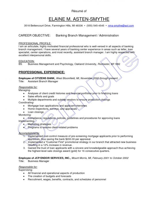 sample resume bank credit manager