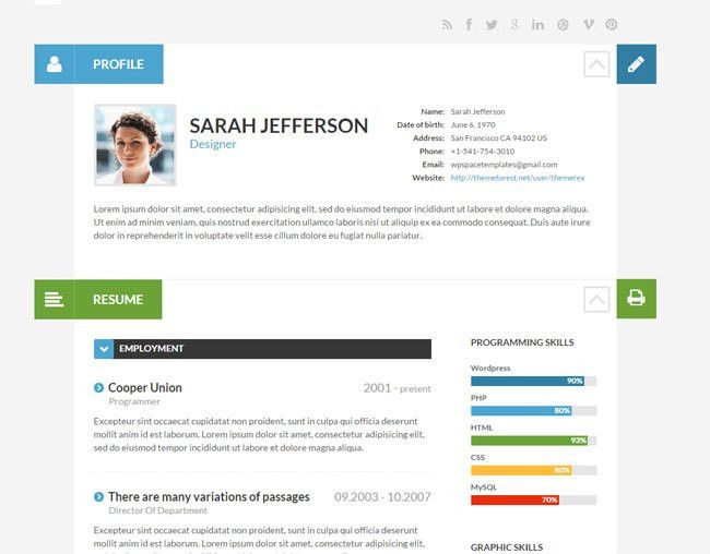 15 Best WordPress Themes for Creating Resume, CV & Profile