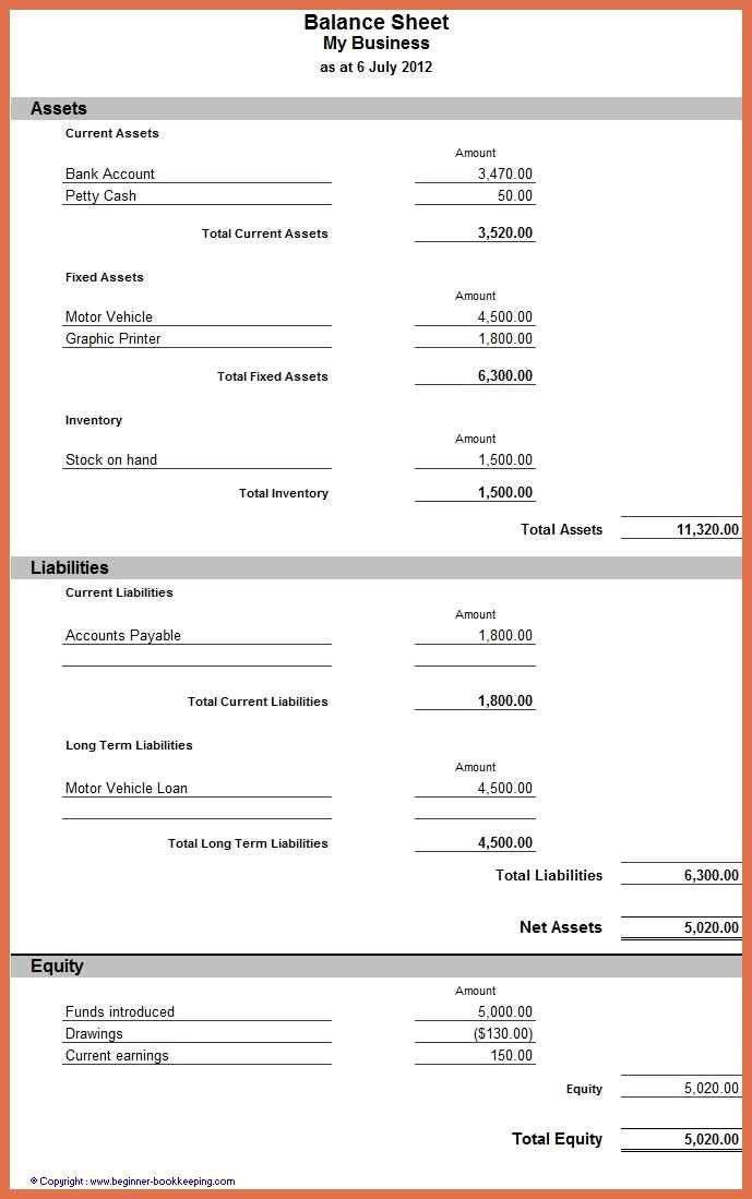 balance sheet example   bio example