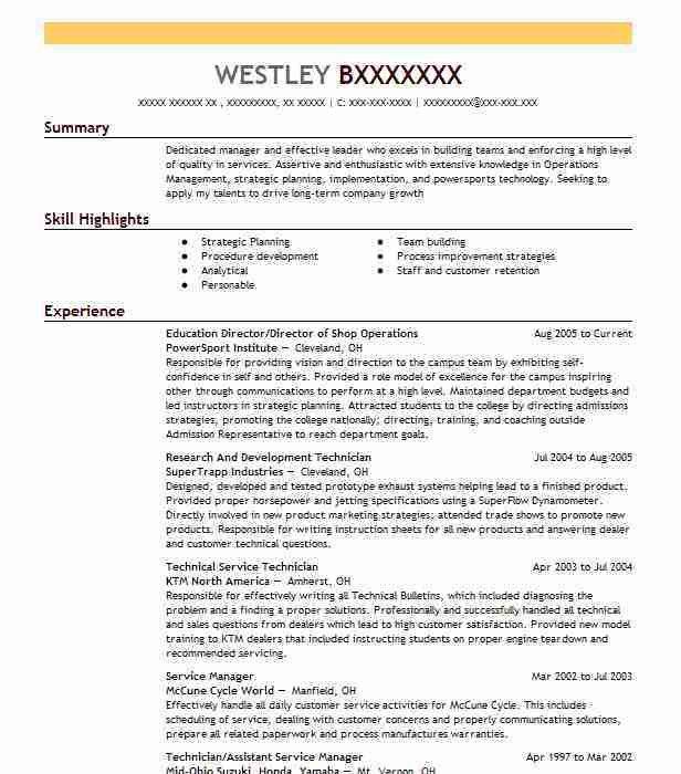 Best Director Resume Example | LiveCareer