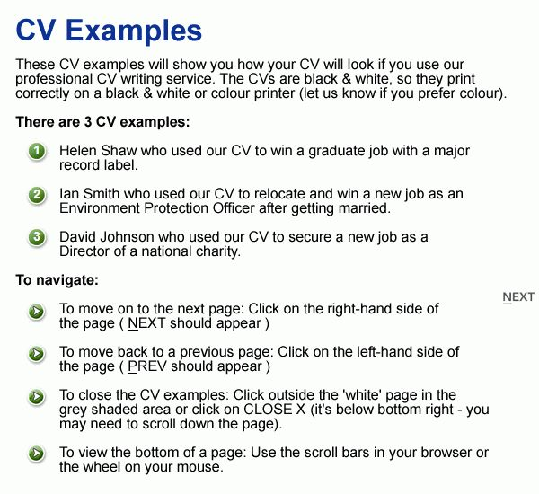 Professional CV Writing Service UK CV Experts Since 1993