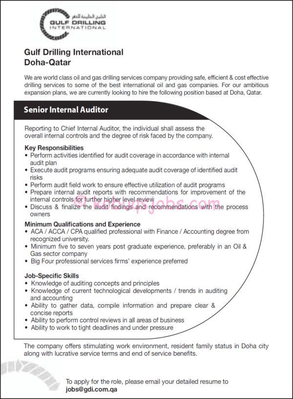 resume internal auditor internal auditor resume samples visualcv