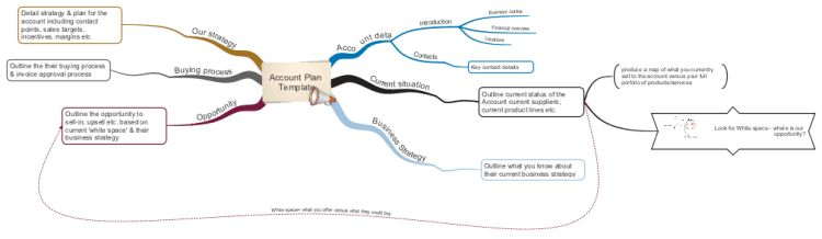 Account Plan Template mind map