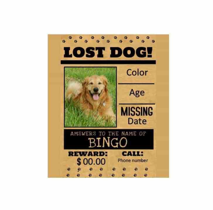 Lost Pet Flyer Template Free [Template.billybullock.us ]
