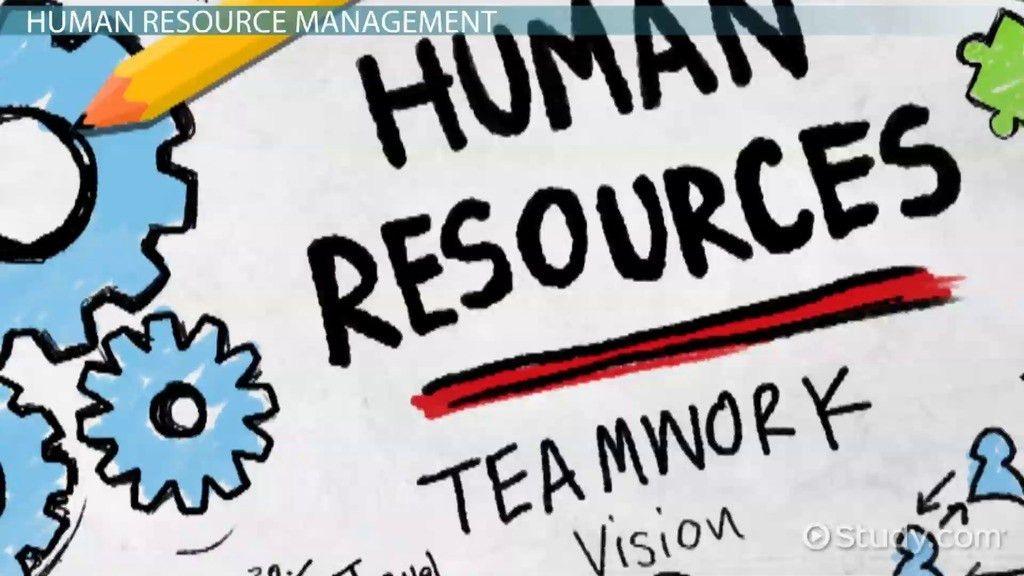 Strategic Human Resource Management: Definition & Importance ...
