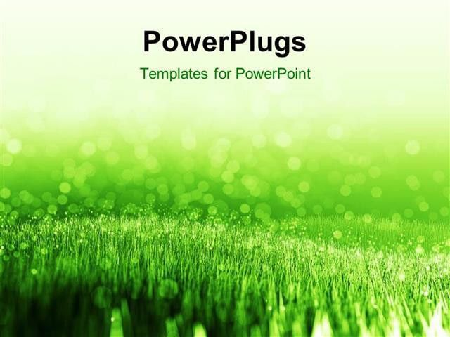 PowerPoint Template: spring background with green summer grass and ...