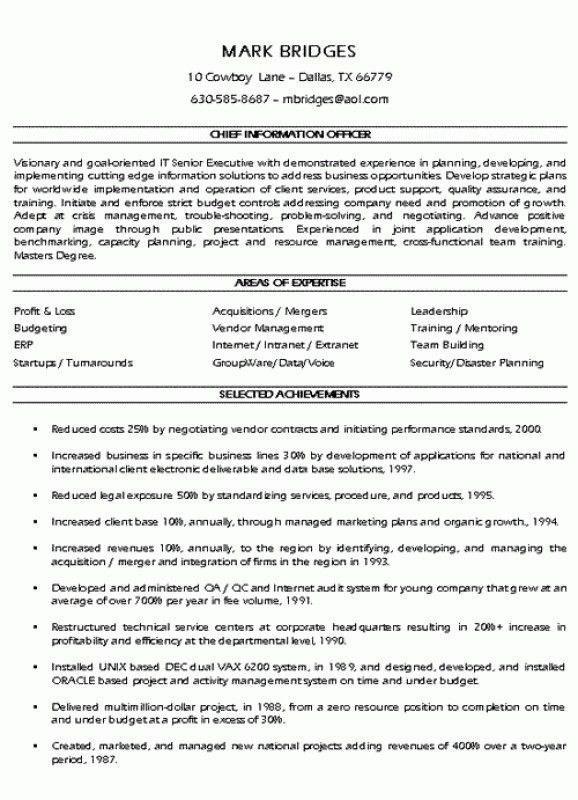 Executive Summary Resume – Resume Examples