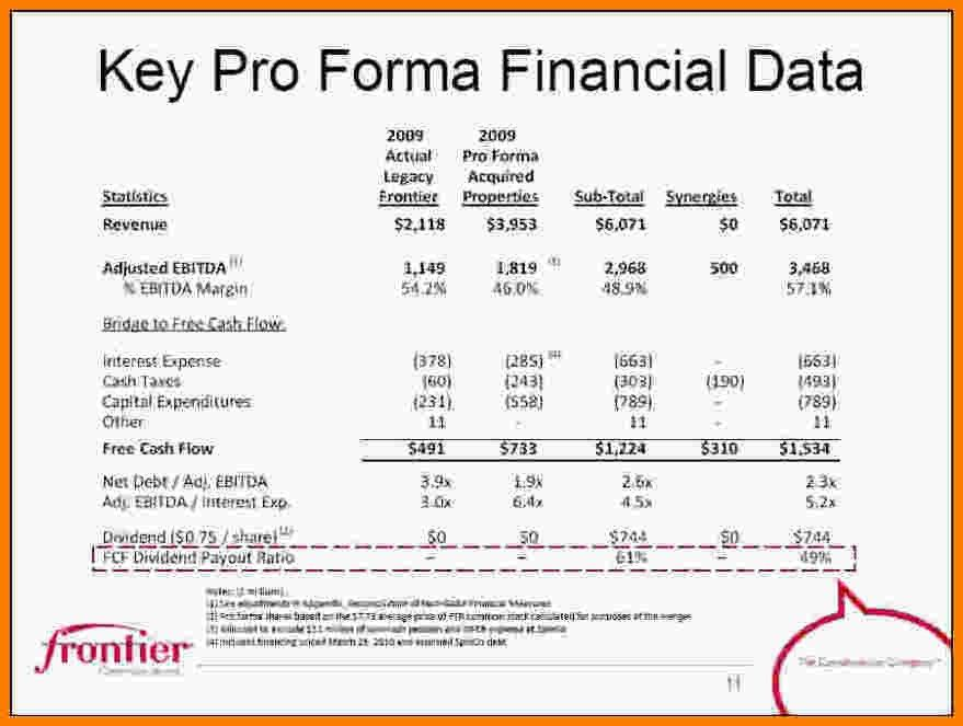 10+ pro forma financial statement template | Case Statement 2017