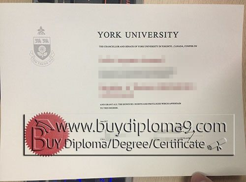 york university degree Buy diploma, buy college diploma,buy ...