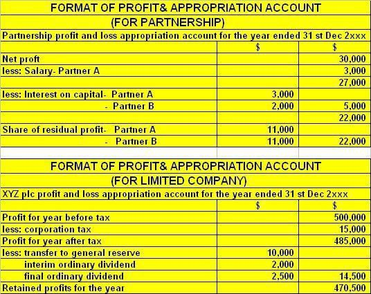 Format Of Profit & Loss Appropriation Accounts For Partnership And ...