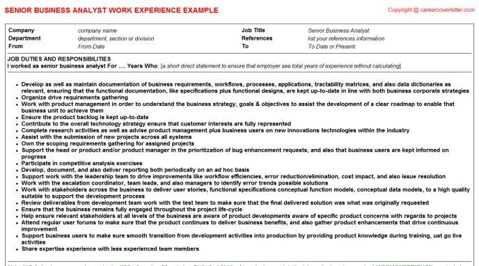 Senior Business Analyst Job Title Docs