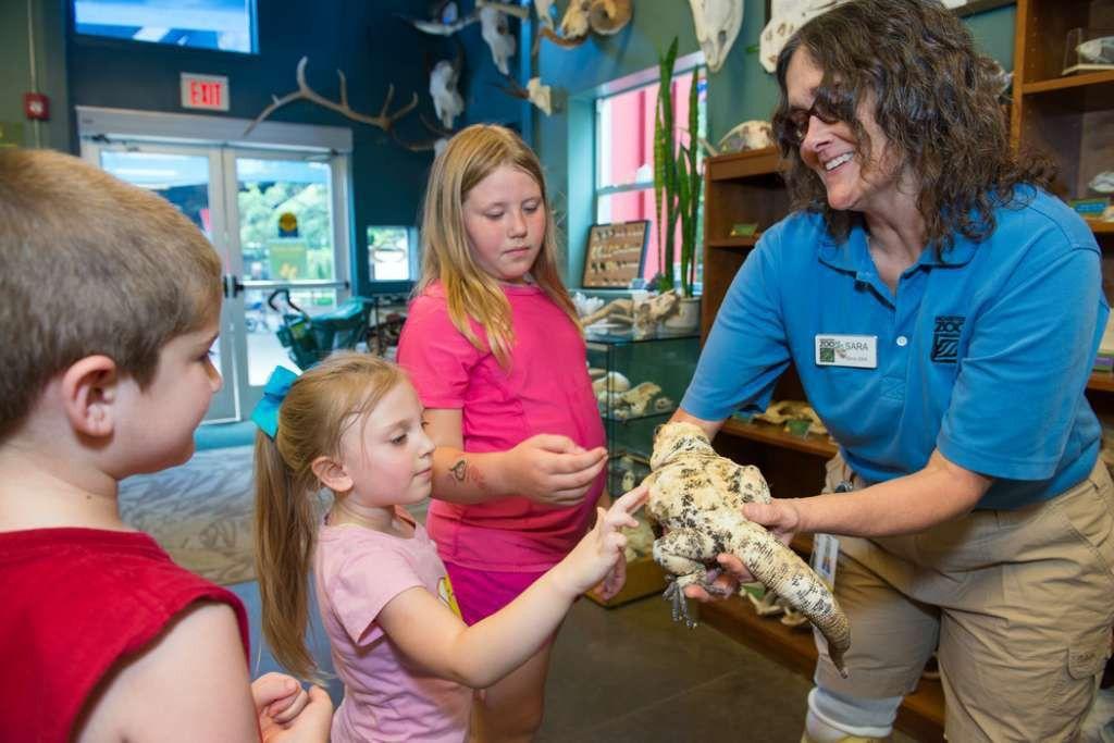 Houston Zoo zookeeper wins national award - Houston Chronicle