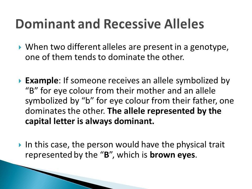 Genes, Heredity & Punnett Squares - ppt video online download