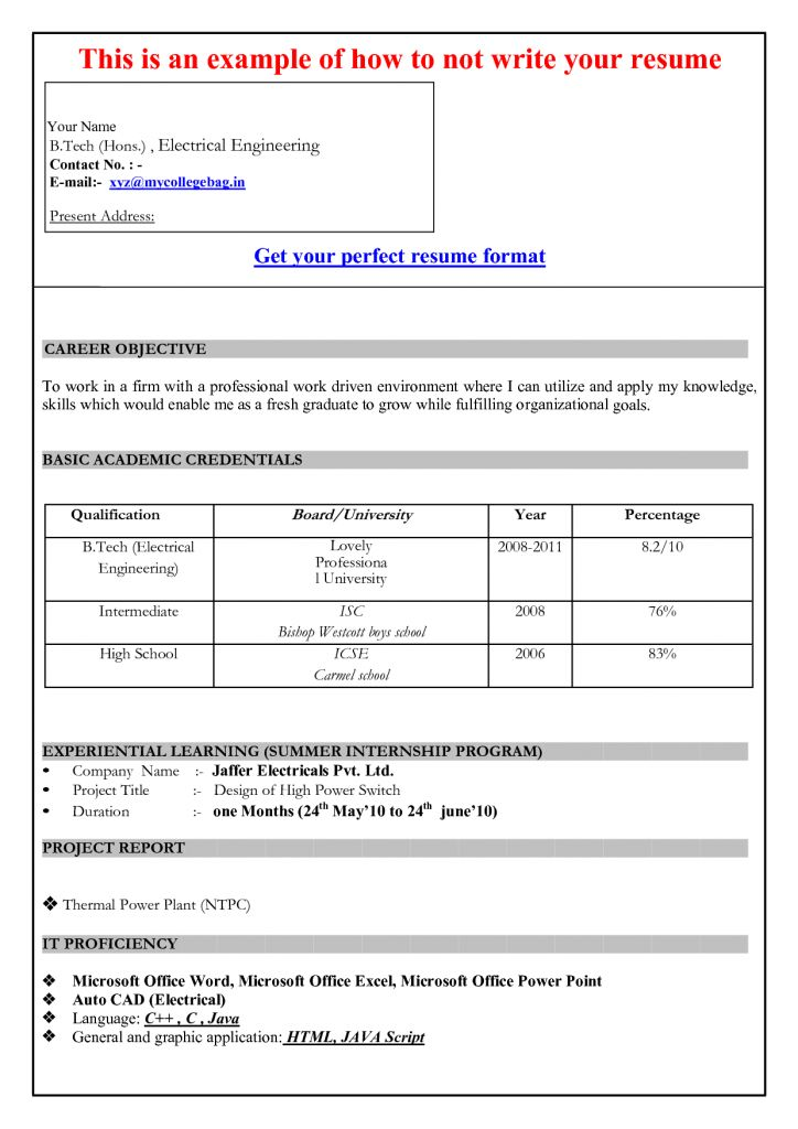 Interesting Inspiration Resume Format Microsoft Word 12 Sample ...
