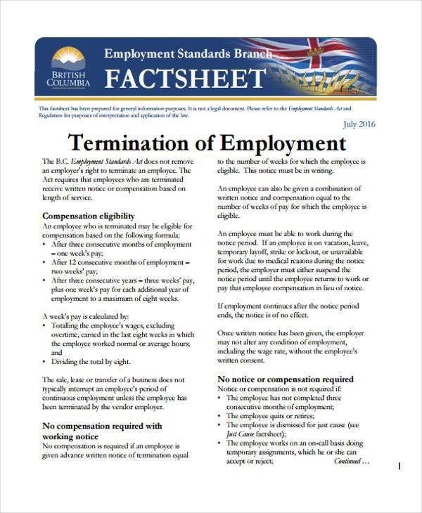 32 Fact Sheet Templates in PDF | Free & Premium Templates