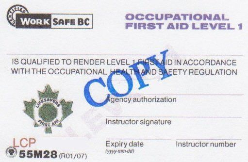 Occupational First Aid Level 2, Workplace BC industrial safety ...