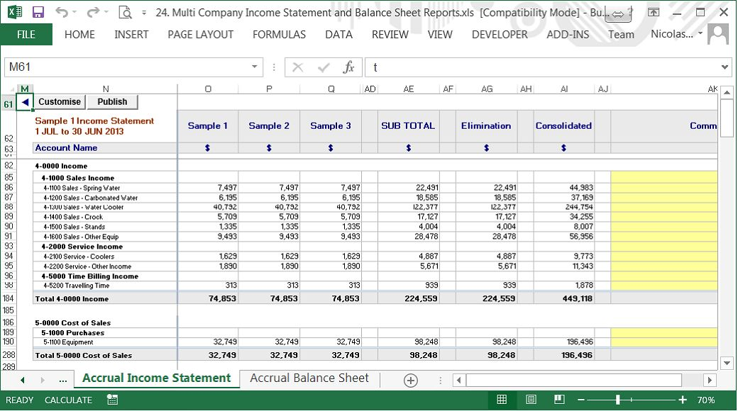 Consolidated Profit & Loss, Balance Sheet and Cash Flow reports ...