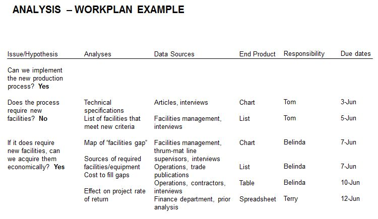 Issue Analysis Work Plan - Example