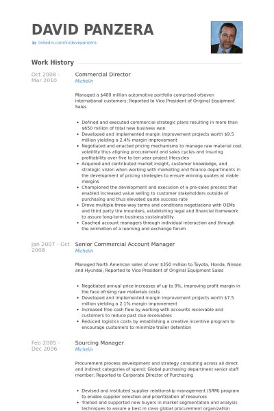 Commercial Director Resume samples - VisualCV resume samples database