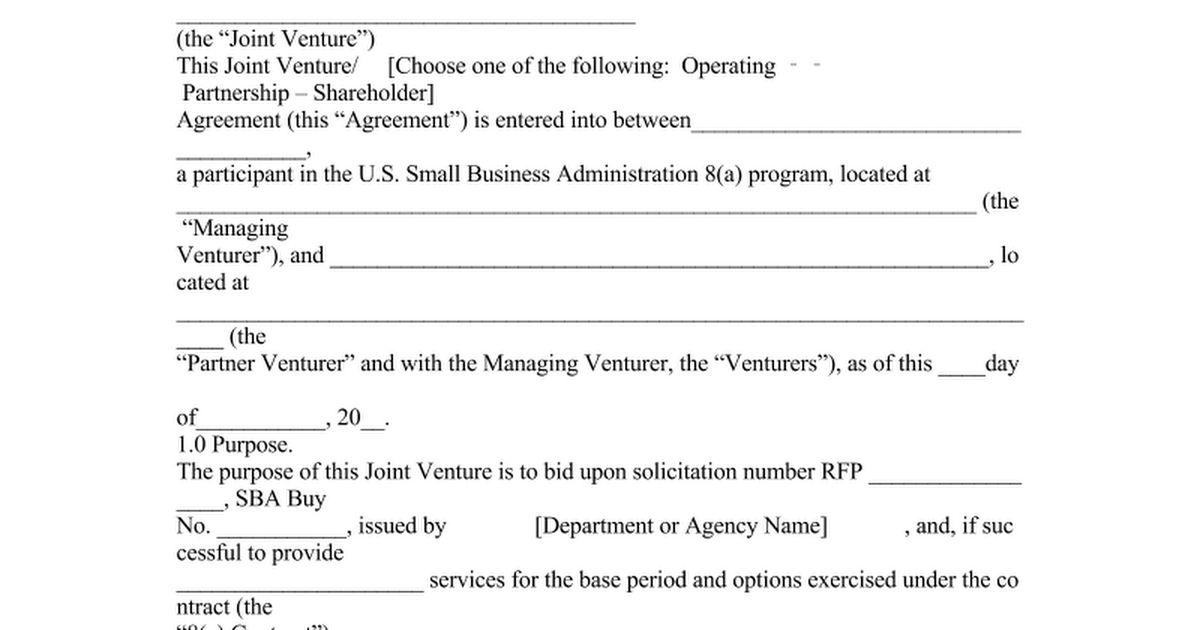 joint venture agreement - Google Docs