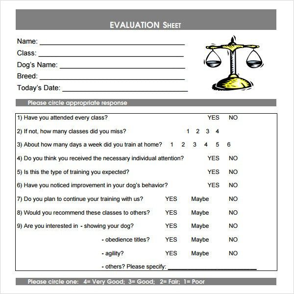 Class Evaluation Template - 8+ Free Download for PDF