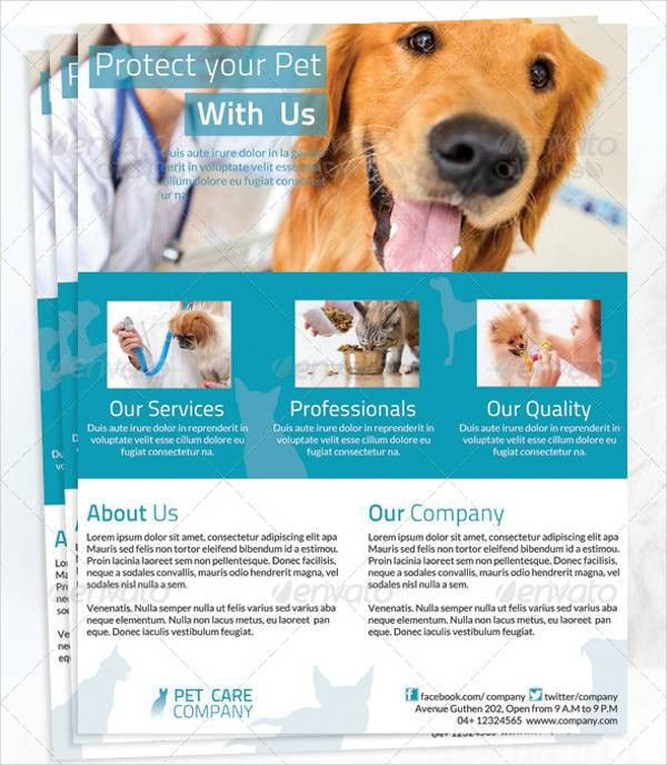 Lost pet flyer template free create flyer 8 psd lost dog flyer dog walking flyer templates 7 free psd vector ai eps format pronofoot35fo Choice Image