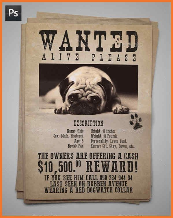 missing dog flyer | sow template