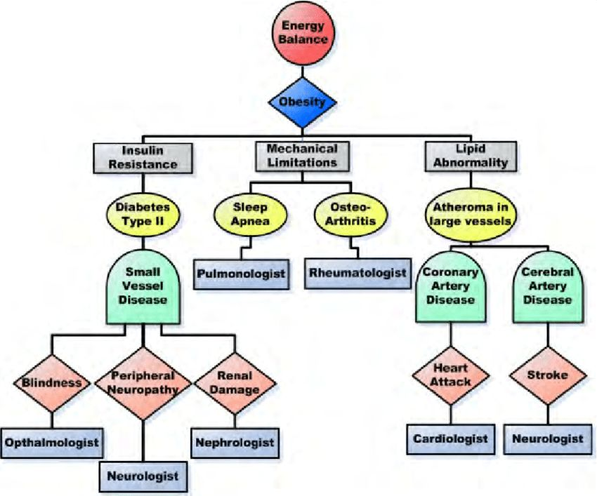 An example of a concept map that links large and small blood vessel...