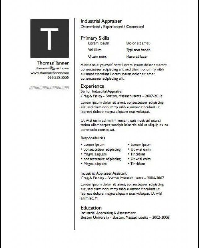 Company Resume Template – Resume Examples