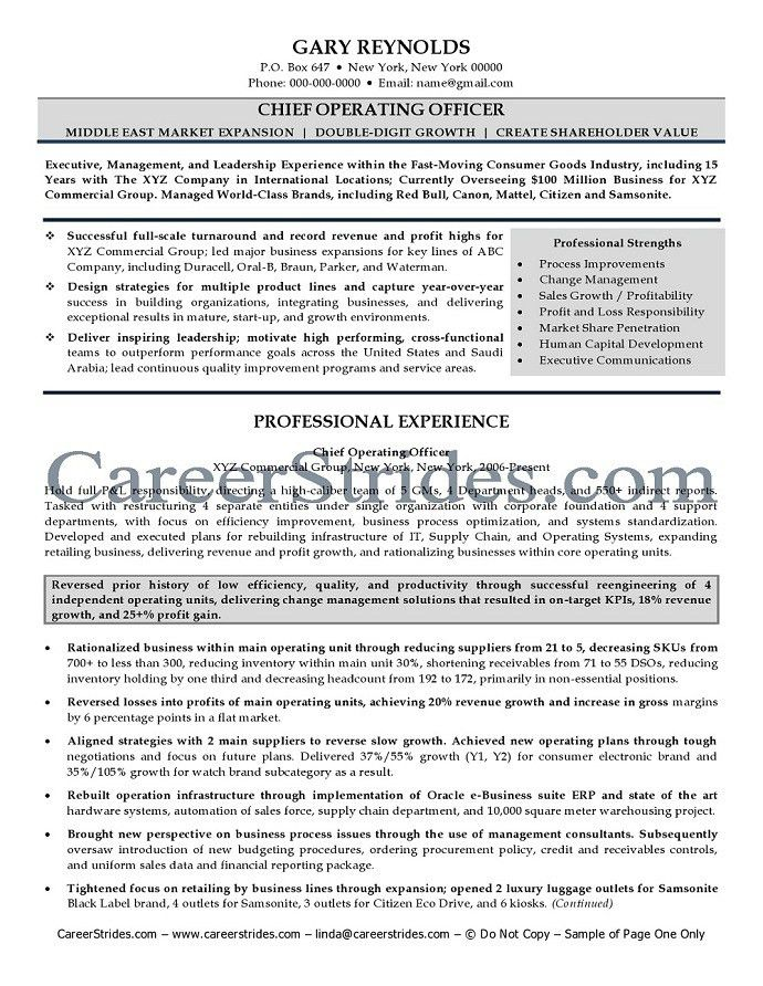 chief officer resume