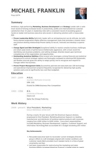 vp of information technology resume vice president of technology