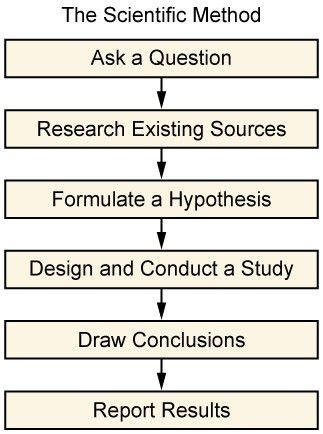 The Research Process | Boundless Sociology