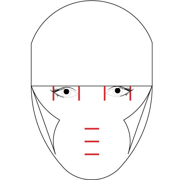 Modeling the Human Face in Illustrator